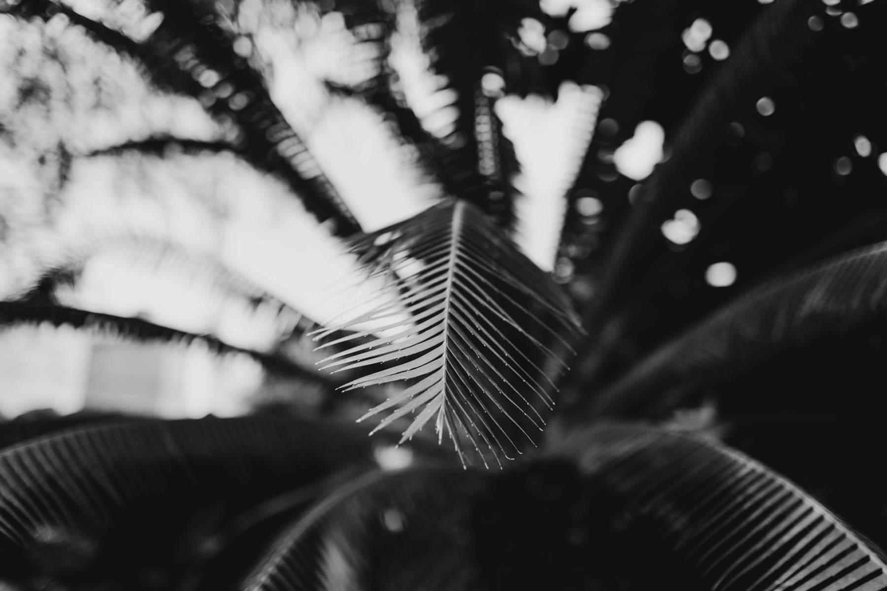TaraBethPhotograpy-43